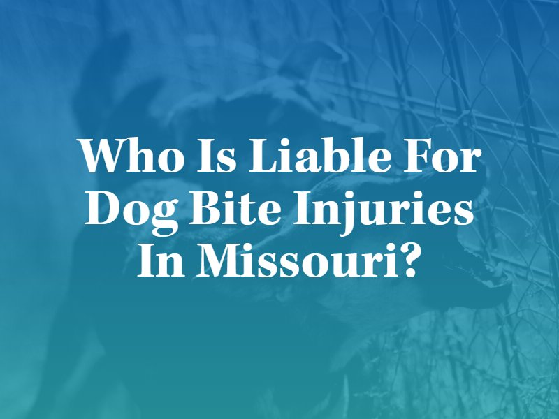 Who is liable for Dog bite injuries in Missouri?